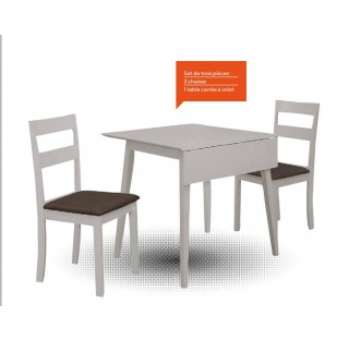 SPRINGFIELD - TABLE + 2 CHAISES